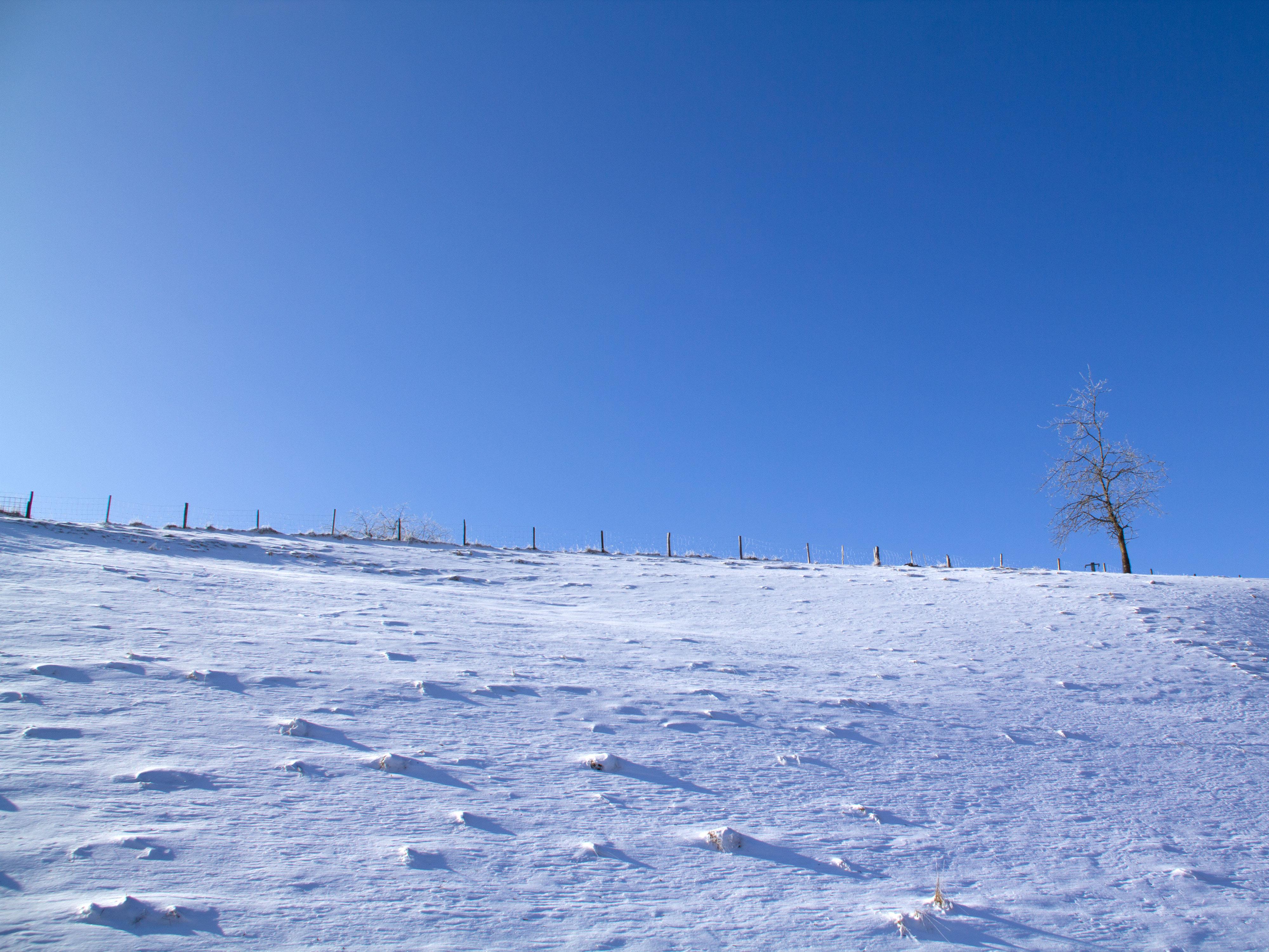 Winter Und Schnee Texturen Hintergrundbilder Kostenlos Und